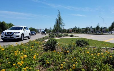 South Fry Road Beautification